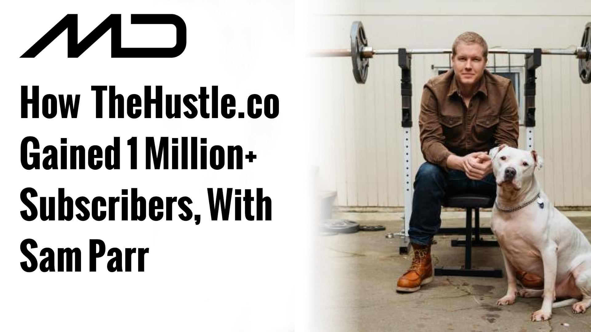How TheHustle.co Gained 1 Million+ Subscribers, With Sam Parr | Mike Dillard